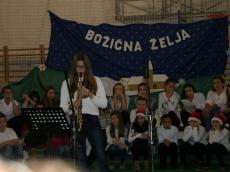 bozicna-zelja-9