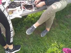 kostanjev-piknik-pragersko-11