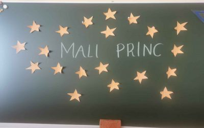KULTURNI DAN MALI PRINC