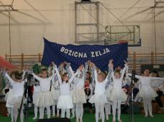 bozicna-zelja-15