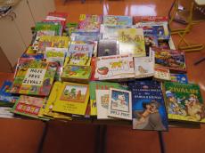 Zbiranje iger, igrač in knjig